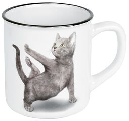 Yoga Cats Warroir