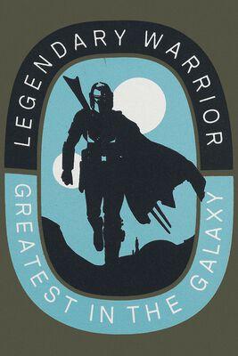 The Mandalorian - Legendary Warrior