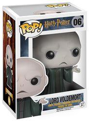 Lord Voldemort Vinyl Figure 06
